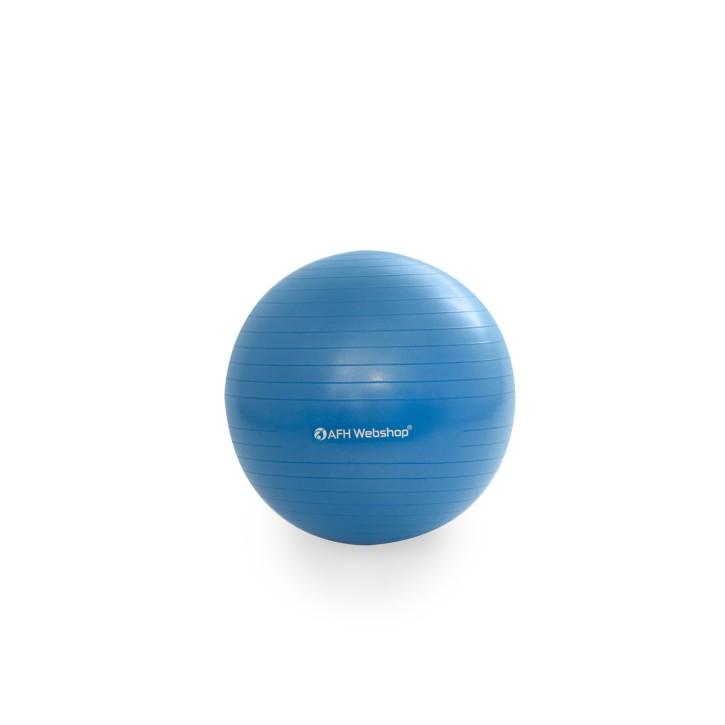 AFH TheraPIE Gymnastikball inkl. Pumpe | blau | ca. Ø 55 cm