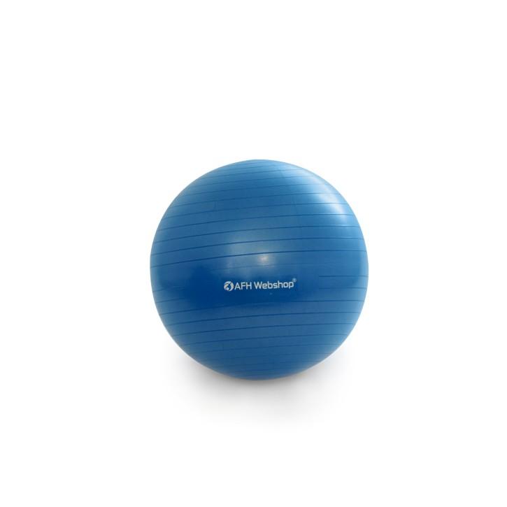 AFH TheraPIE Gymnastikball inkl. Pumpe | dunkelblau | ca. Ø 65 cm