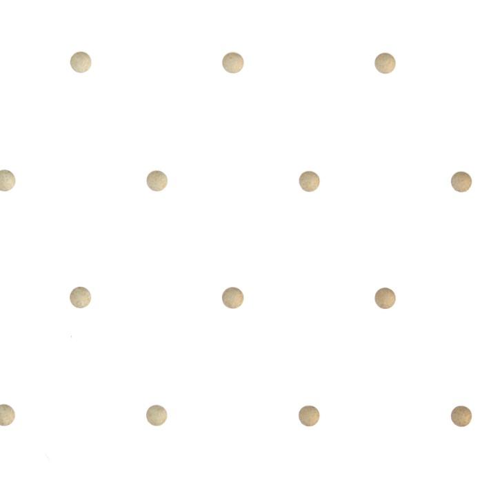Thermoplastisches Schienenmaterial | B Cast | mini perforiert | 3,2 mm | weiß