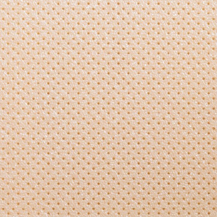 Thermoplastisches Schienenmaterial | Turbocast® | micro perforiert | 1,6mm | beige