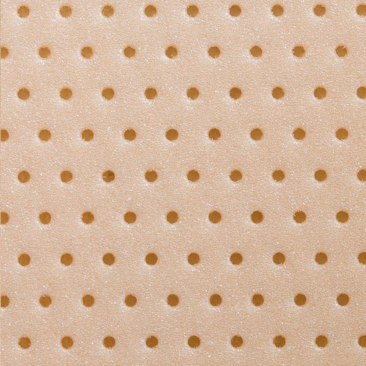 Thermoplastisches Schienenmaterial | Turbocast® | opti perforiert | 2,5mm | beige