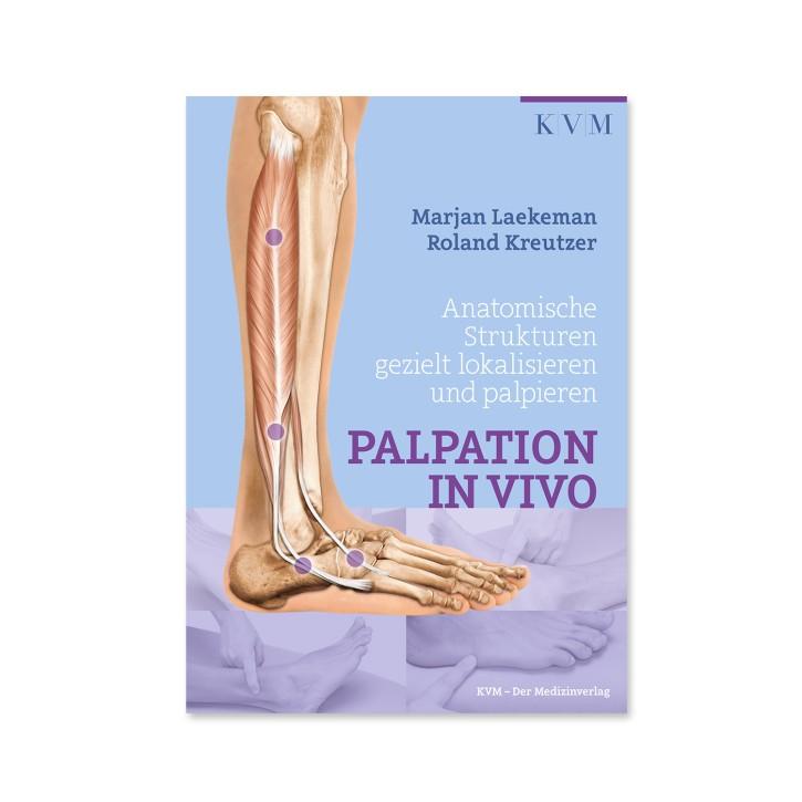 Palpation in Vivo - Anatomische Strukturen gezielt lokalisieren und palpieren