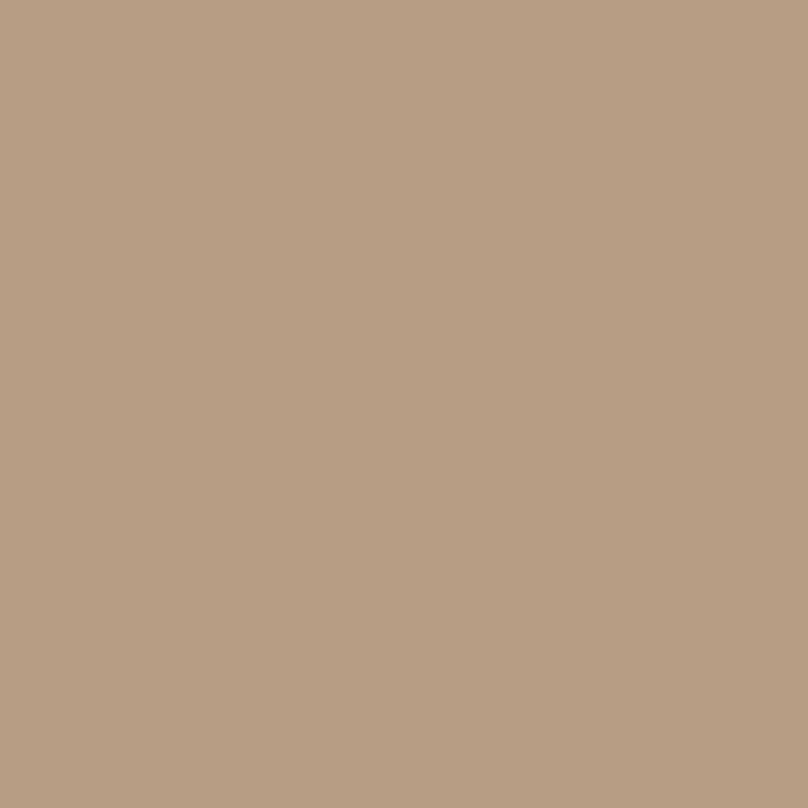 ORFIT CLASSIC Schienenplatten | verschiedene Ausführungen | beige