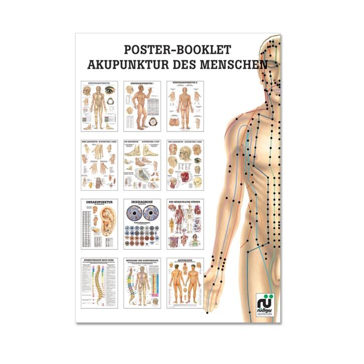 Poster Booklet   Akupunktur des Menschen   Rüdiger Anatomie