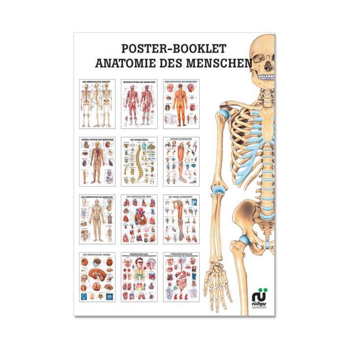 Poster Booklet | Anatomie des Menschen | Rüdiger Anatomie