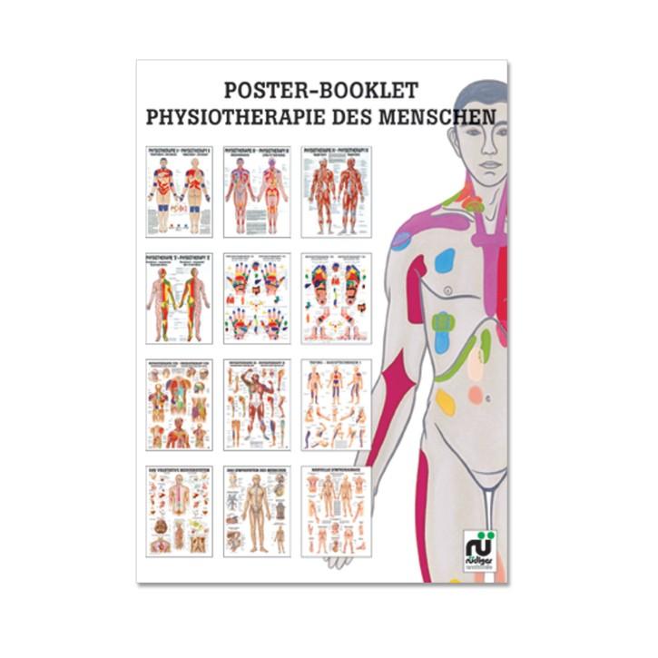 Poster Booklet   Physiotherapie des Menschen   Rüdiger Anatomie