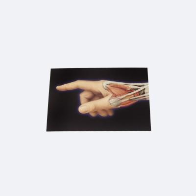PROMETHEUS Postkarten | 3D Hand | 5er Pack